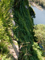 The Climb by januz
