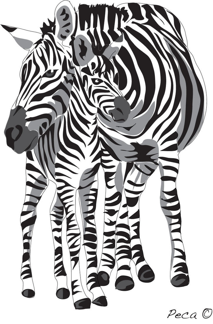 Zebra mom and baby by peca06
