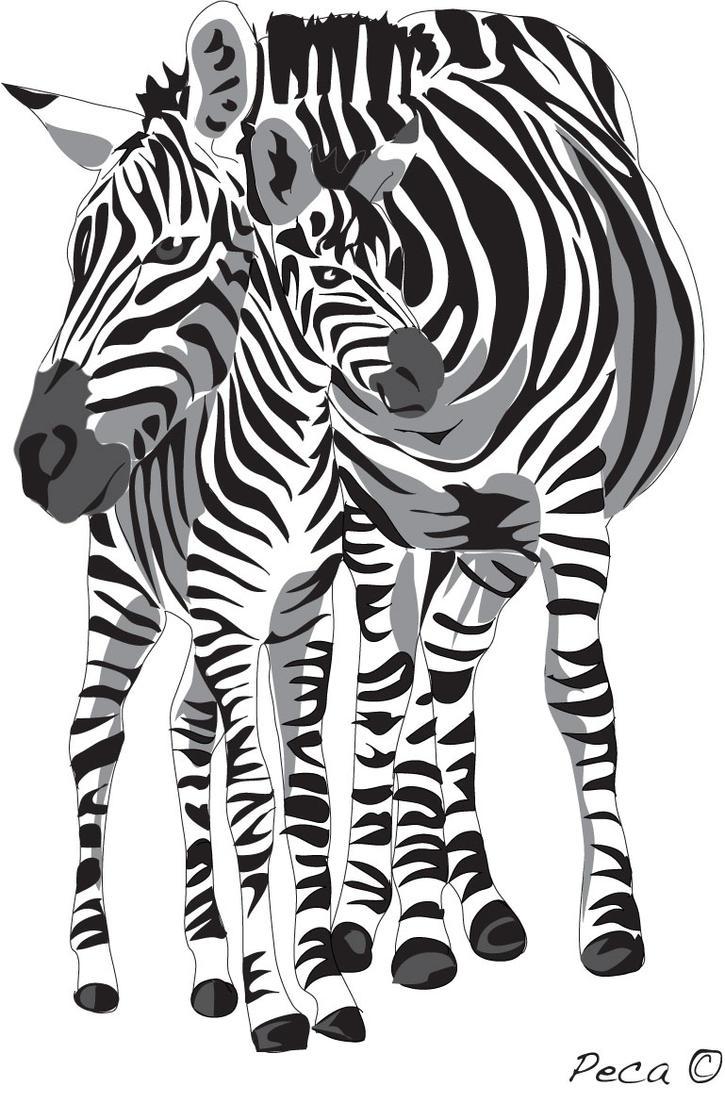 Zebra mom and baby by peca06