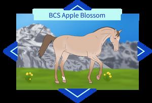 061 Apple Blossom
