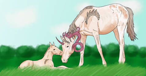7749 Foal Prompt   Here I Am