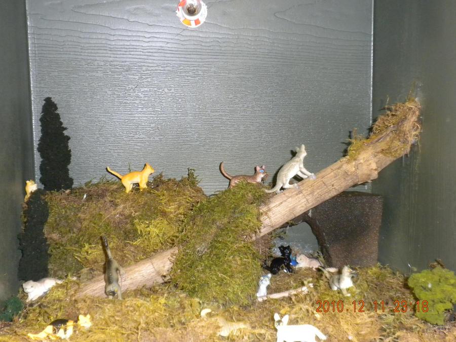 Warrior cats thunderclan camp