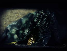 Golden Trash by winona-adamon