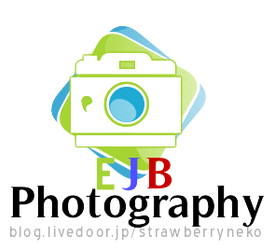 My Photography logo by MartianChipmunk