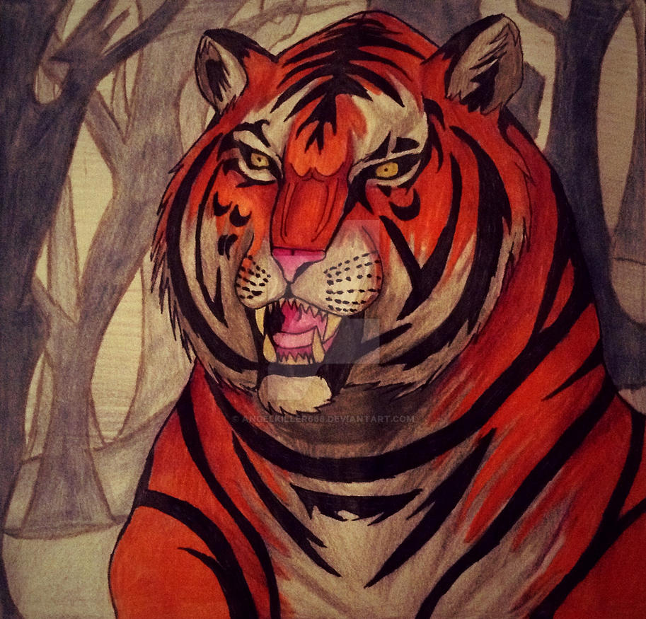 My first real tiger drawing attempt by AngelKiller666