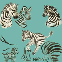 Zebra Practice