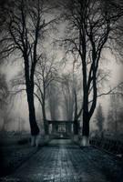 Cemetery Gates by AncaMitroi