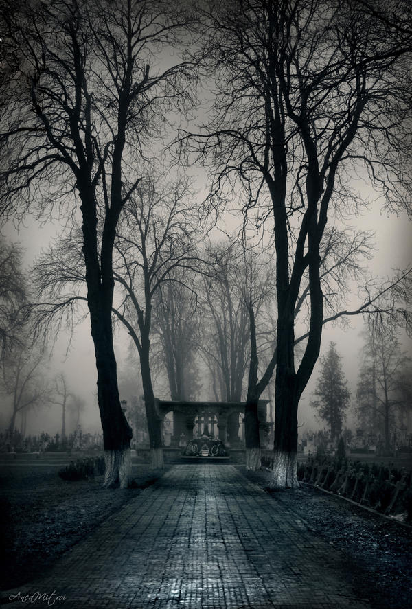 Creepy Graveyard Gate | www.imgkid.com - The Image Kid Has It!