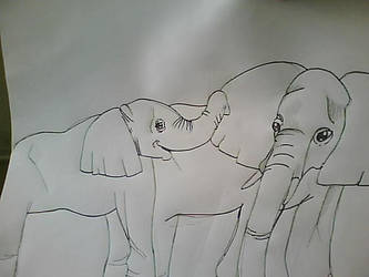 Elephants by stacistasis