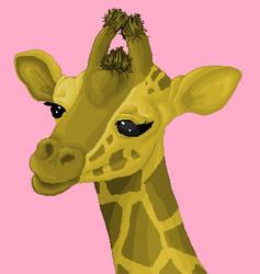 Male Giraffe by stacistasis