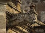 Old convent: The gargoyles