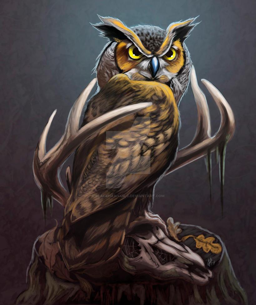 Owl On Deer Skull by BlackHawk45LC