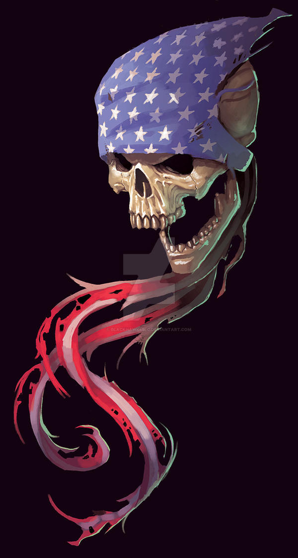 USA skull decal concept by BlackHawk45LC