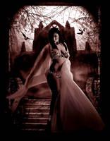Mistress of Darkness 2 by aninur