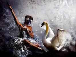 The Swandance by aninur