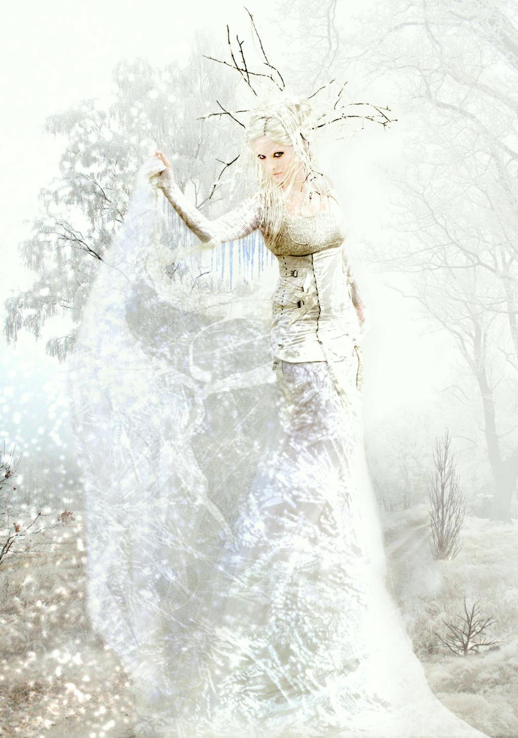 Winter by aninur
