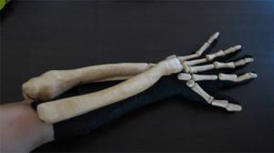 Bone Daddy Glove