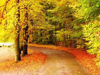 Path.Gold by sahk99
