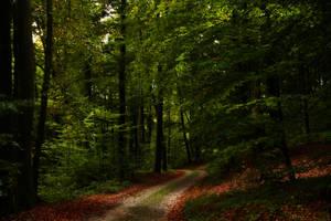 Faery path by sahk99