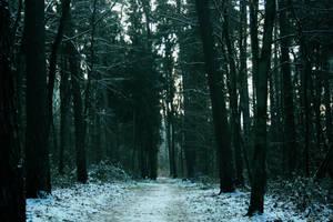 Am Ende des Weges by sahk99
