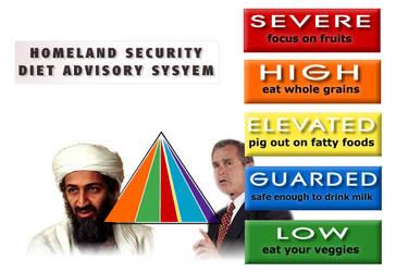 DHS Diet Advisory System
