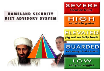 DHS Diet Advisory System