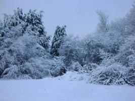 snow stock 09 backgounds 3 by EmzazasStock