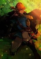 Link - BOTW by Cu-ry