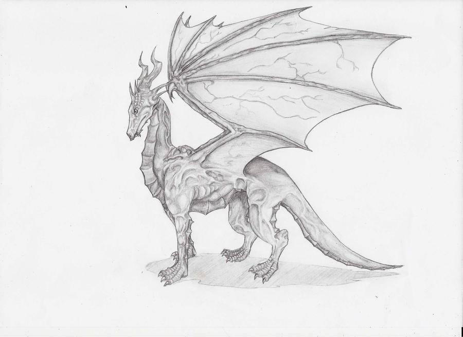 Lead Dragon by MidoriBara