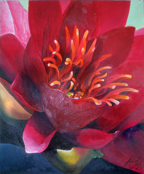 Bleeding Virgin -Water Lilly-