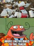 Trash Belongs in Trash
