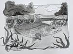 Mangroves I by Little-Bluefish