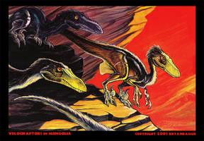 Velociraptors in Mongolia by BryanBaugh
