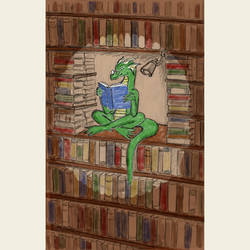 DragonFall 29 - Book