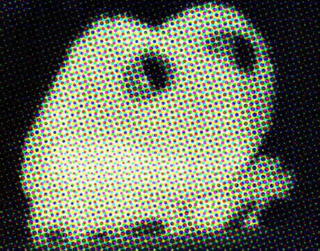 Freddy Digital Frog by seltaebeht