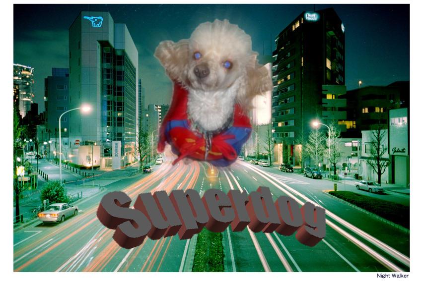 Super Dog by seltaebeht