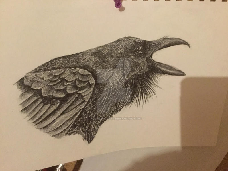 Raven 1 by carriephlyons