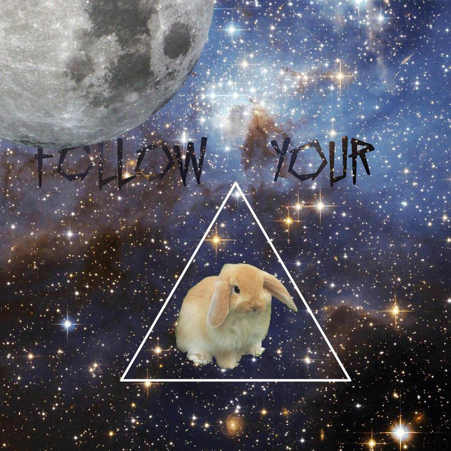 Follow your bunnies. by Felipespani