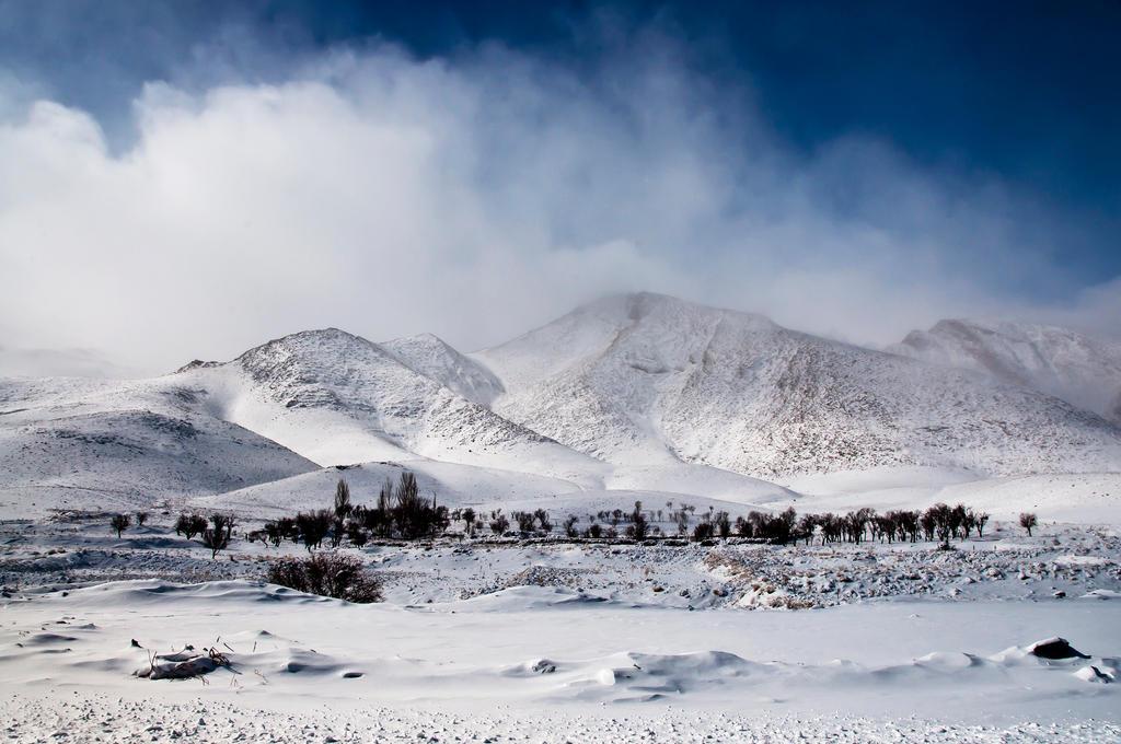 snowy day - 1 by farzanehlphl