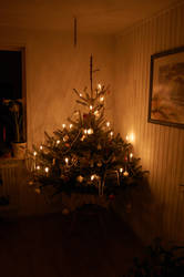 Christmas Tree by t1R3d
