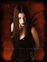 Evil Eyes by ladymorgana