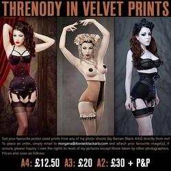 Threnody In Velvet Prints