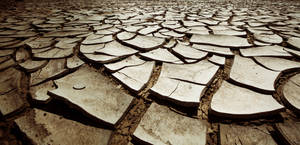 desert cracked