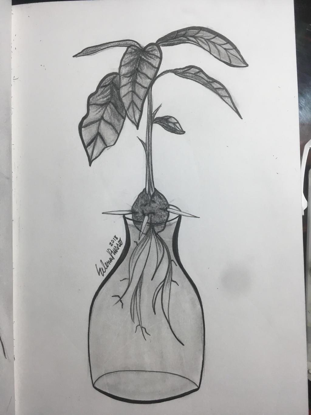 Inktober Day 18: bottle