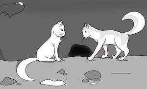 Patrols - SnowClan Assignment(EDIT) by SnowQueenGoddess