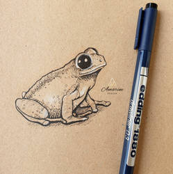 Little Frog Drawing
