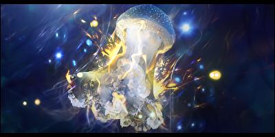 Jellyfish by GfxSmurf