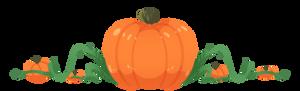 Pumpkin Profile Header (F2U)