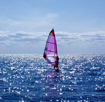 Windsurfing on Cape Cod Bay by NoelBoulet