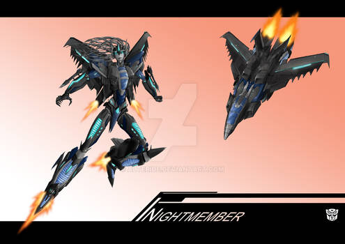 Commission : Nightmember